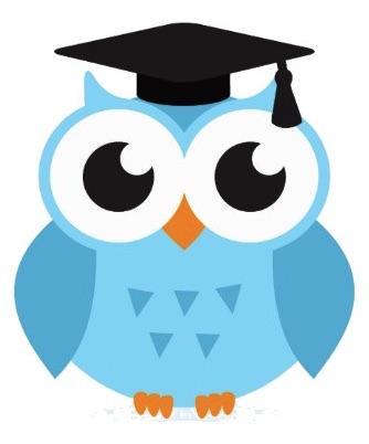 SciClarify owl